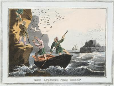 Bird Catching from Below, Shetland Islands, 1813-JH Clarke-Giclee Print