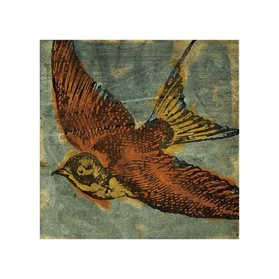 https://imgc.artprintimages.com/img/print/bird-collage-no-1_u-l-f56phf0.jpg?p=0
