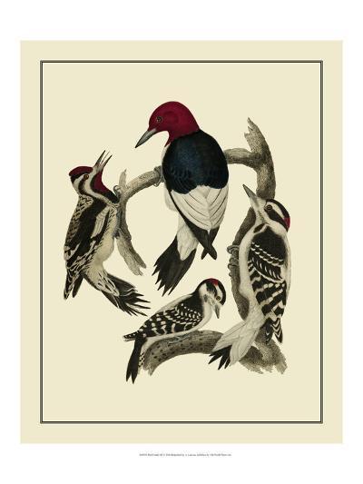 Bird Family III-A^ Lawson-Art Print