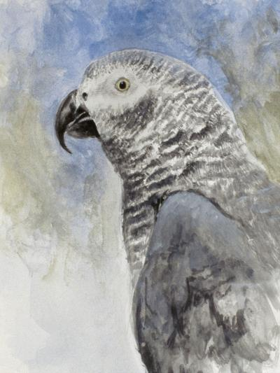 Bird - Head Study-Rusty Frentner-Giclee Print