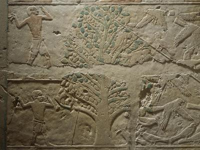 Bird Hunting with Net, Relief from the Mastaba--Giclee Print