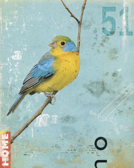Bird II-Kareem Rizk-Giclee Print