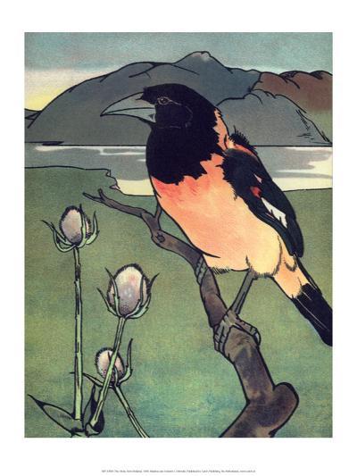 Bird Illustration, The Oriole, 1899-Edward Detmold-Art Print