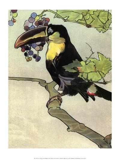 Bird Illustration, The Toucan, 1899-Edward Detmold-Art Print