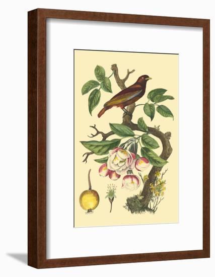 Bird in Nature IV-E. Guerin-Framed Art Print