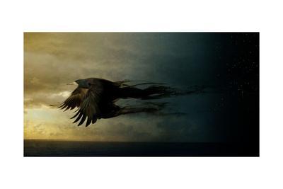 https://imgc.artprintimages.com/img/print/bird-kingdom-2_u-l-q1g3q0u0.jpg?p=0