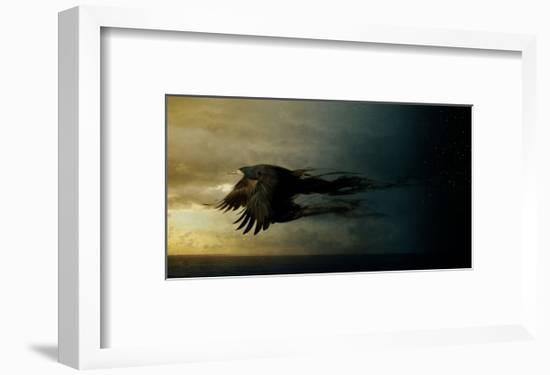 Bird Kingdom 2-Johan Lilja-Framed Art Print