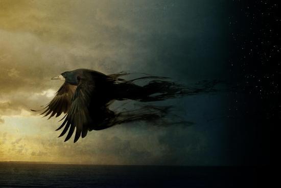 Bird Kingdom 2-Johan Lilja-Giclee Print
