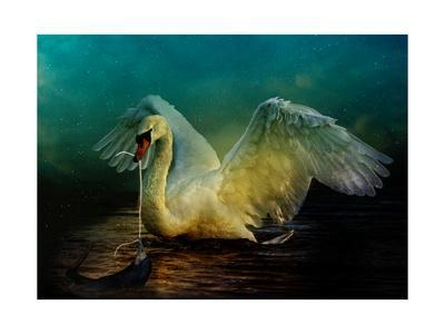 https://imgc.artprintimages.com/img/print/bird-kingdom-6_u-l-q1g3so00.jpg?p=0