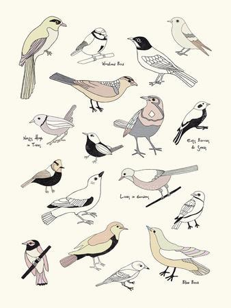 https://imgc.artprintimages.com/img/print/bird-life_u-l-f96hs90.jpg?p=0