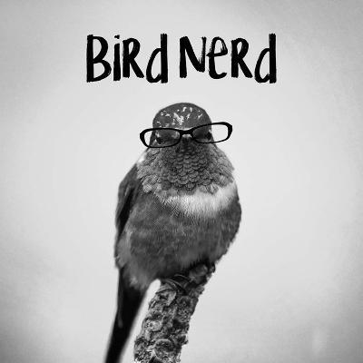 Bird Nerd - Hummingbird-Color Me Happy-Art Print
