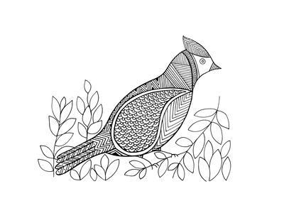 https://imgc.artprintimages.com/img/print/bird-north-cardinal_u-l-q11tse60.jpg?p=0