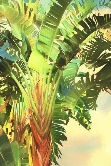 Bird Of Paradise Palm I Premium Giclee Print By Melinda Bradshaw