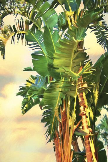 Bird Of Paradise Palm Ii Premium Giclee Print By Melinda Bradshaw