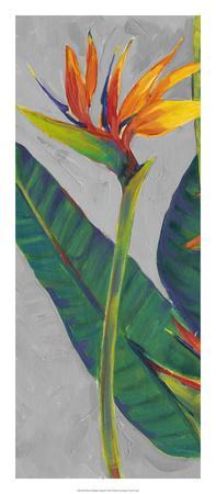 https://imgc.artprintimages.com/img/print/bird-of-paradise-triptych-i_u-l-f8hsau0.jpg?p=0