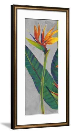 Bird of Paradise Triptych I-Tim OToole-Framed Art Print
