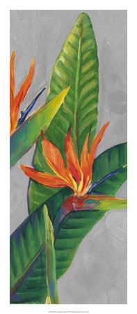 https://imgc.artprintimages.com/img/print/bird-of-paradise-triptych-iii_u-l-f8hsaw0.jpg?p=0