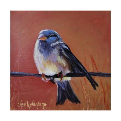 Bird on a Barb-Cheri Wollenberg-Art Print
