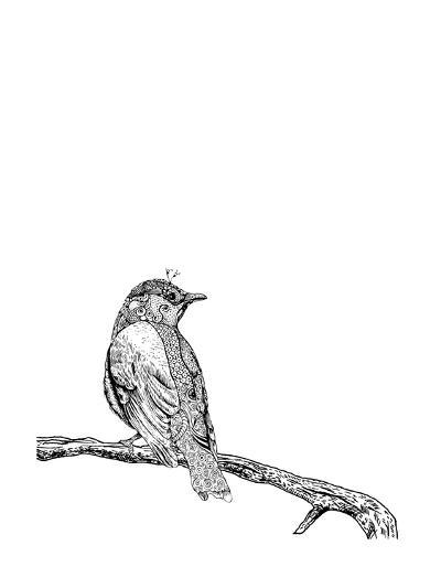Bird on a Branch--Art Print
