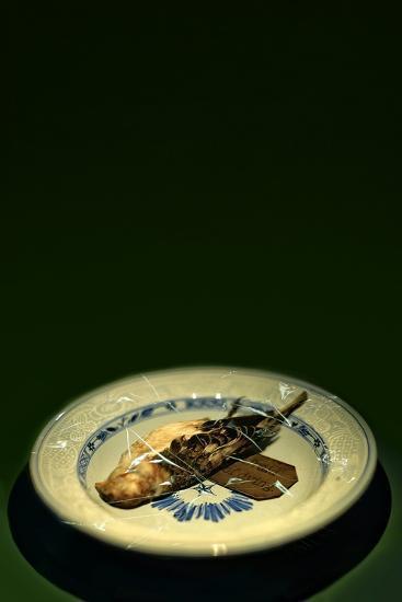 Bird Plate-Johan Lilja-Photographic Print