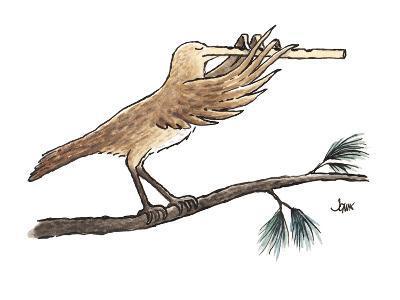 bird's extended, flute-like beak is played as an instrument - Cartoon-John Jonik-Premium Giclee Print