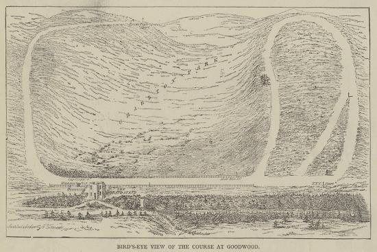 Bird'S-Eye View of the Course at Goodwood--Giclee Print