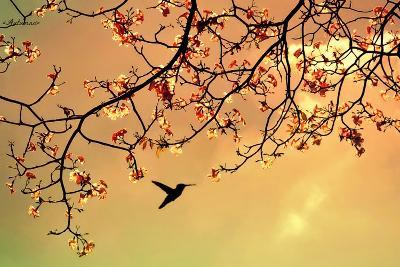 Bird Singing in the Morning Sky-Autumnn-Photographic Print