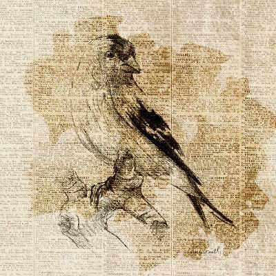 Bird Study III-Lanie Loreth-Art Print