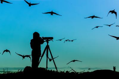 Bird Watcher Silhouette-Erkki Alvenmod-Photographic Print