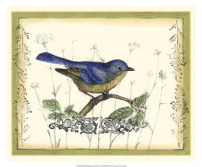Bird & Wildflowers II-Jennifer Goldberger-Premium Giclee Print