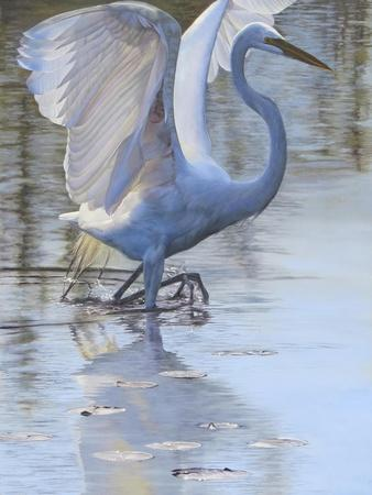 Bird-Rusty Frentner-Giclee Print