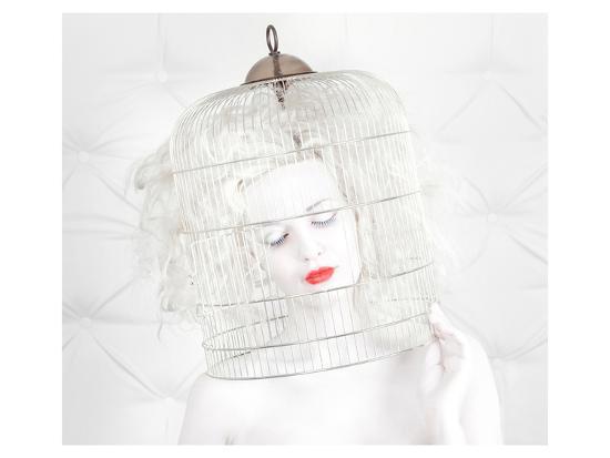 Birdcage Love--Art Print