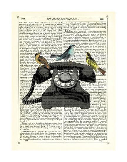 Birdcall-Marion Mcconaghie-Art Print