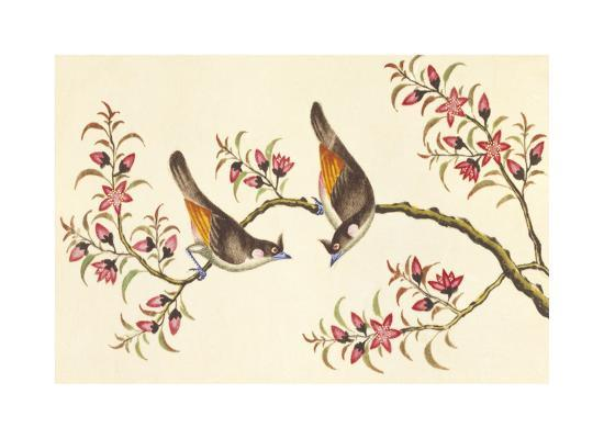 Birds And Flowers On Branch--Premium Giclee Print