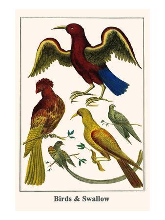 https://imgc.artprintimages.com/img/print/birds-and-swallow_u-l-pggmuz0.jpg?p=0