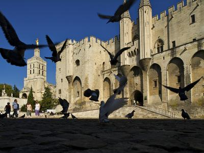 Birds Fly Outside the Gothic Palais Des Papes-Jim Richardson-Photographic Print
