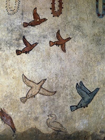 Birds in Flight--Photographic Print