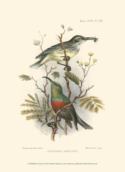 Birds in Nature I-J^C^ Keulemans-Art Print