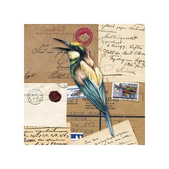 Birds Letters V--Art Print