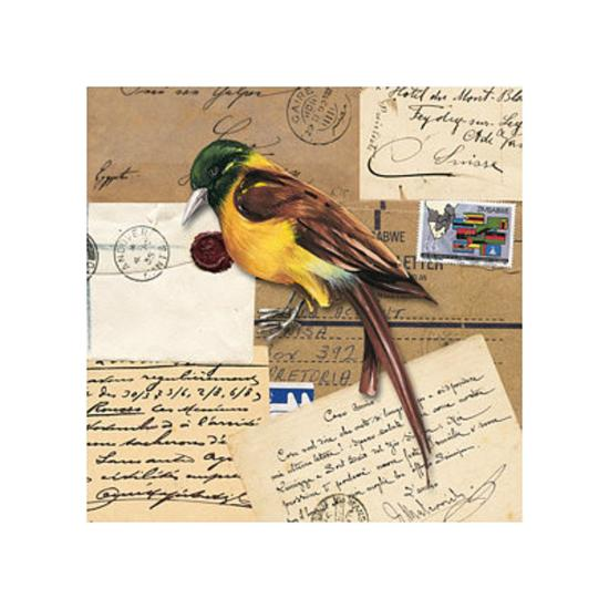 Birds Letters VII--Art Print
