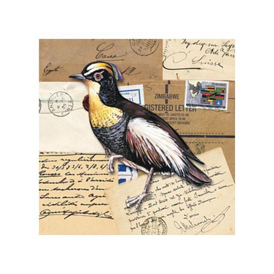 Birds Letters VIII--Art Print