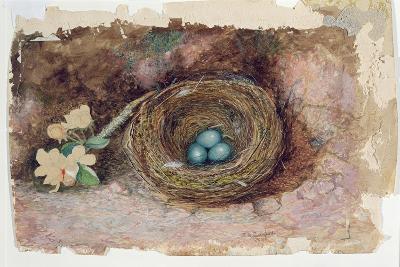 Birds Nest, 1863-John Atkinson Grimshaw-Giclee Print