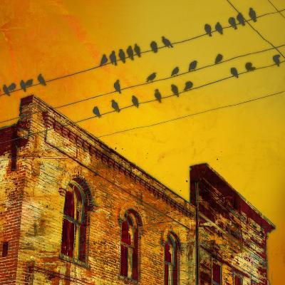 Birds on a Wire I-James McMasters-Art Print