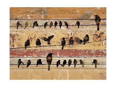 Birds on Wood V-Irena Orlov-Art Print