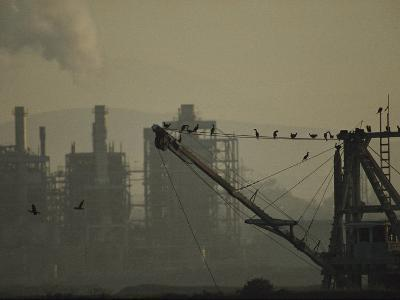 Birds Roost on the Riggings of a Crane Near Belching Smokestacks-Joel Sartore-Photographic Print