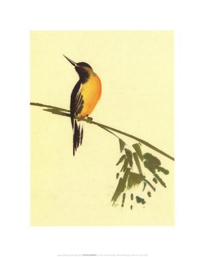 Birds-Aurore De La Morinerie-Art Print