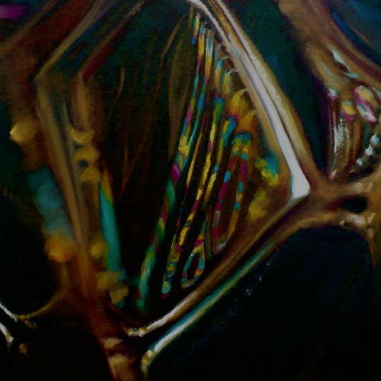 Birifringence, 2008-Lee Campbell-Giclee Print