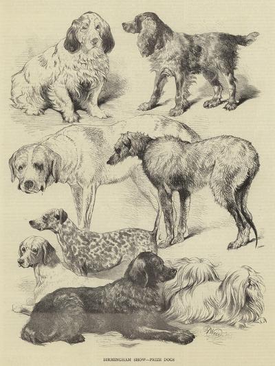 Birmingham Show, Prize Dogs-Harrison William Weir-Giclee Print