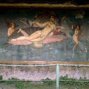 Birth of Venus, 1st Century