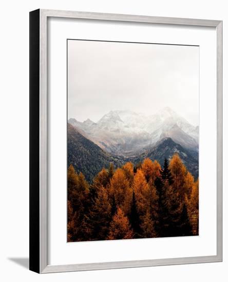 Bishop 17- Design Fabrikken-Framed Photographic Print